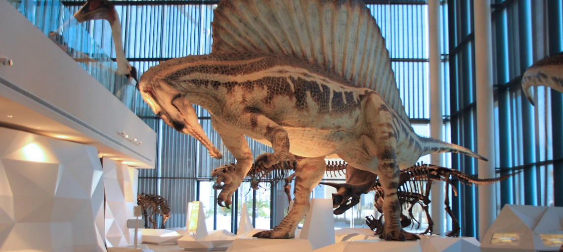 Museo de la Ciencia Natural Kuwait Proasur